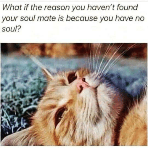 mate: What if the reason you haven't found  your soul mate is because you have  soul?