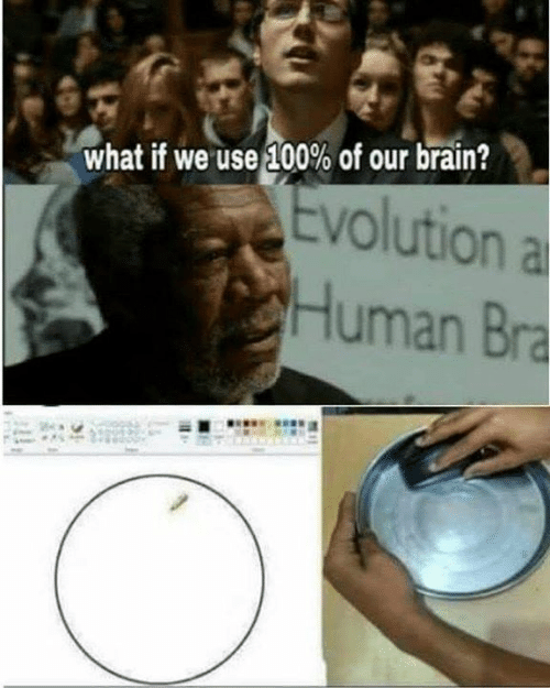 anaconda: what if we use 100% of our brain?  Evolution a  Human Bra