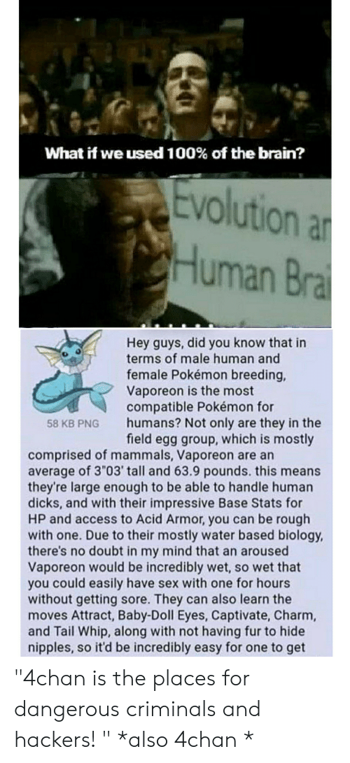 """4chan, Dicks, and Pokemon: What if we used 100% of the brain?  Evolution an  uman  Hey guys, did you know that in  terms of male human and  female Pokémon breeding,  Vaporeon is the most  compatible Pokémon for  humans? Not only are they in the  field egg group, which is mostly  58 KB PNG  comprised of mammals, Vaporeon are an  average of 3 """"03' tall and 63.9 pounds. this means  they're large enough to be able to handle human  dicks, and with their impressive Base Stats for  HP and access to Acid Armor, you can be rough  with one. Due to their mostly water based biology,  there's no doubt in my mind that an aroused  Vaporeon would be incredibly wet, so wet that  you could easily have sex with one for hours  without getting sore. They can also learn the  moves Attract, Baby-Doll Eyes, Captivate, Charm,  and Tail Whip, along with not having fur to hide  nipples, so it'd be incredibly easy for one to get """"4chan is the places for dangerous criminals and hackers! """" *also 4chan *"""