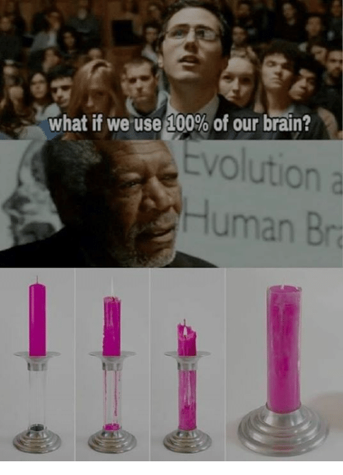 Anaconda, Memes, and Brain: What if weuse 100% of our brain?  Evolution a  Human Bra