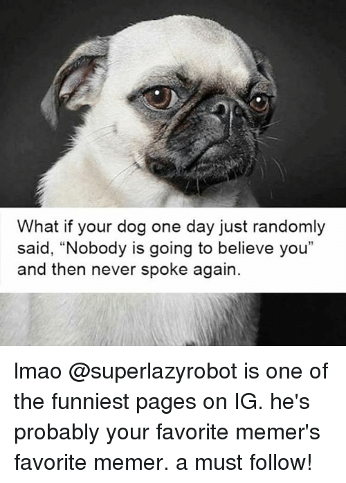 """Bevee: What if your dog one day just randomly  said, Nobody is going to beve you""""  said, """"Nobody is going to believe you""""  and then never spoke again. lmao @superlazyrobot is one of the funniest pages on IG. he's probably your favorite memer's favorite memer. a must follow!"""