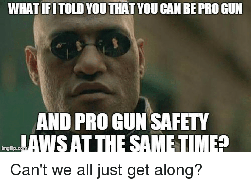 Reddit, Pro, and Gun: WHAT IFITOLD YOU THAT YOU CAN BE PRO GUN  AND PRO GUN SAFETY  ASAT THE SAMETIMEE  mgi p.com Can't we all just get along?