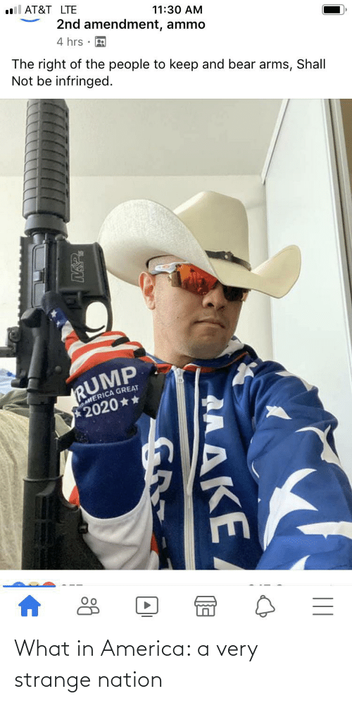in america: What in America: a very strange nation