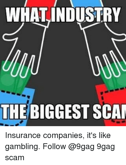 insurance companies: WHAT INDUSTRY  THE BIGGEST SCAM Insurance companies, it's like gambling. Follow @9gag 9gag scam