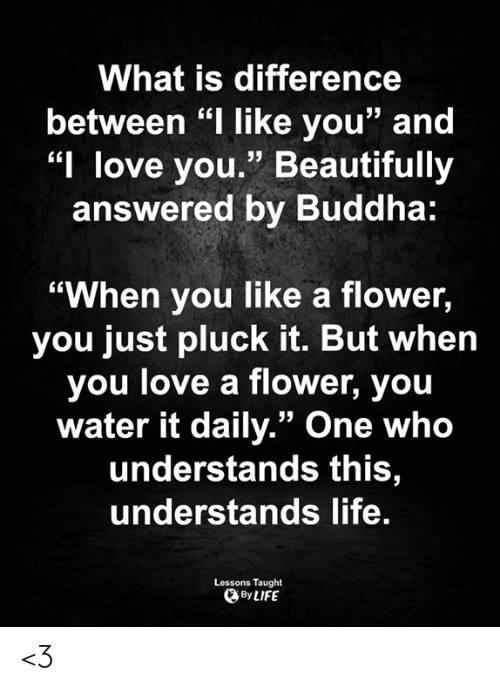 """Life, Love, and Memes: What is difference  between """"I like you"""" and  """"I love you."""" Beautifully  answered by Buddha:  """"When you like a flower,  you just pluck it. But when  you love a flower, you  water it daily."""" One who  understands this,  understands life.  Lessons Taught  By LIFE <3"""