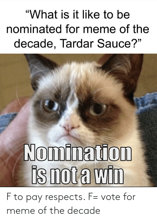 """Tardar Sauce: """"What is it like to be  nominated for meme of the  decade, Tardar Sauce?""""  Nomination  is not a win F to pay respects. F= vote for meme of the decade"""