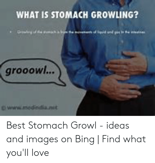 🐣 25+ Best Memes About Stomach Growling Meme | Stomach