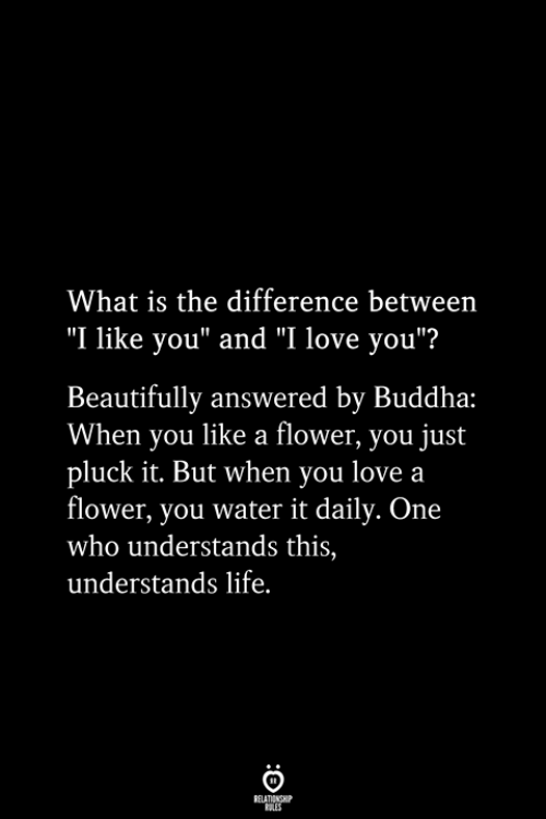 "Life, Love, and I Love You: What is the difference between  ""I like you"" and ""I love you""?  Beautifully answered by Buddha:  When you like a flower, you just  pluck it. But when you love a  flower, you water it daily. One  who understands this,  understands life.  RELATIONSHIP  ES"