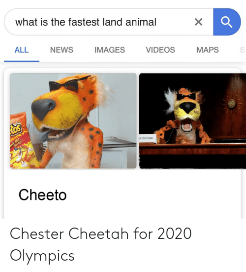Animal Videos: what is the fastest land animal  VIDEOS  ALL  NEWS  IMAGES  MAPS  ER CHEETAH  Cheeto Chester Cheetah for 2020 Olympics
