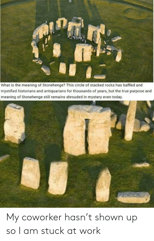 purpose: What is the meaning of Stonehenge? This circle of stacked rocks has baffled and  mystified historians and antiquarians for thousands of years, but the true purpose and  meaning of Stonehenge still remains shrouded in mystery even today. My coworker hasn't shown up so I am stuck at work