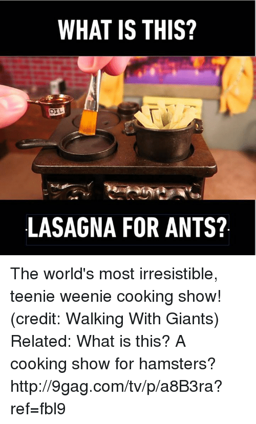 For Ants