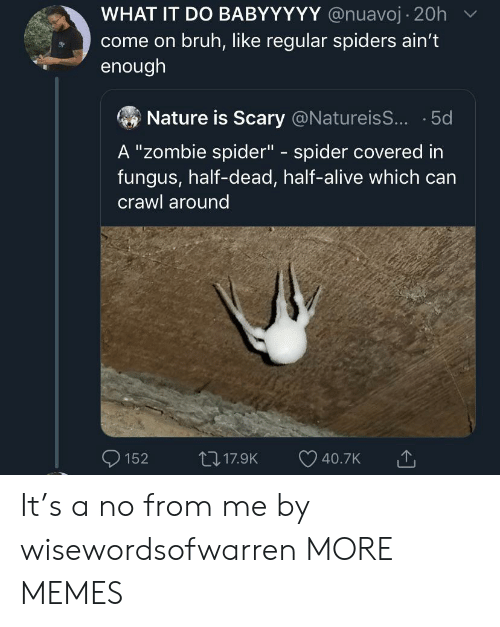 """Alive, Bruh, and Dank: WHAT IT DO BABYYYYY @nuavoj 20h  come on bruh, like regular spiders ain't  enough  Nature is Scary @NatureisS... 5d  A """"Zombie spider"""" spider covered in  fungus, half-dead, half-alive which can  C  crawl around  117.9K  152  40.7K It's a no from me by wisewordsofwarren MORE MEMES"""