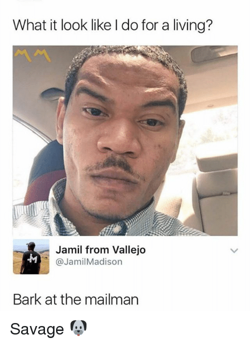 Memes, Savage, and Living: What it look like I do for a living?  Jamil from Vallejo  @JamilMadison  Bark at the mailman Savage 🐶
