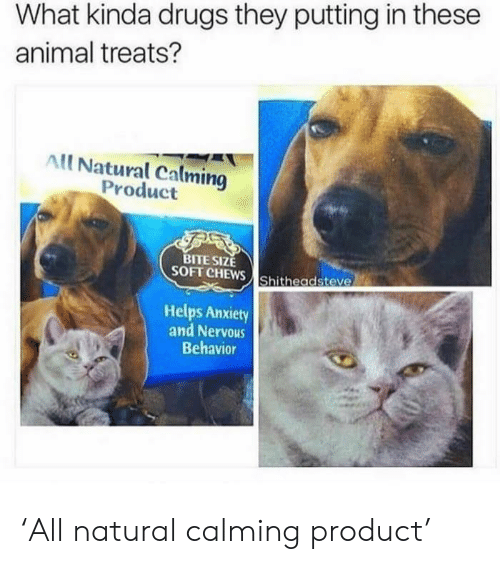 Drugs, Animal, and Anxiety: What kinda drugs they putting in these  animal treats?  All Natural Calming  Product  TE SIZE  SOFT CHEWS Shitheadsteve  Helps Anxiety  and Nervous  Behavior 'All natural calming product'