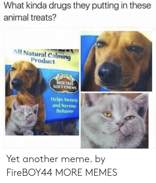 Calming: What kinda drugs they putting in these  animal treats?  All Natural Calming  Product  BITE SIZE  SOFT CHEWS  Helps Anxiety  and Nervous  Behavior Yet another meme. by FireBOY44 MORE MEMES