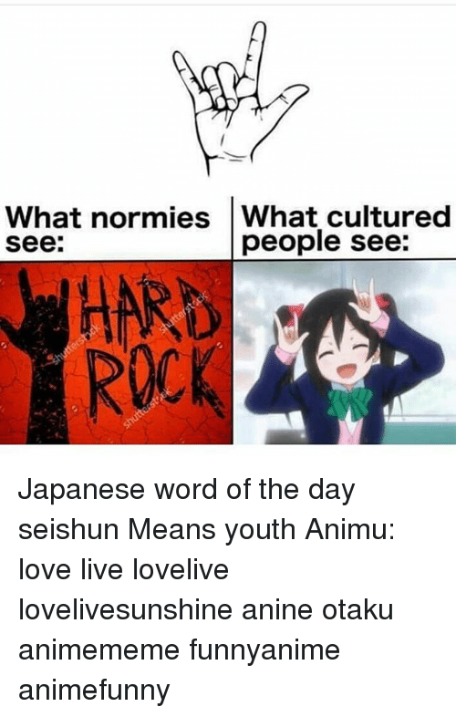 love live: What normies What cultured  see:  people see:  HARD  ROCK Japanese word of the day 青春 せいしゅん seishun Means youth Animu: love live lovelive lovelivesunshine anine otaku animememe funnyanime animefunny