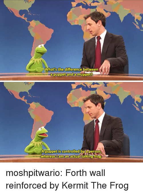 Kermit the Frog, Target, and Tumblr: What s the difference between  a puppet and amuppet   A púppet is controlled by a person  whereas,l aman actual talking frog moshpitwario: Forth wall reinforced by Kermit The Frog