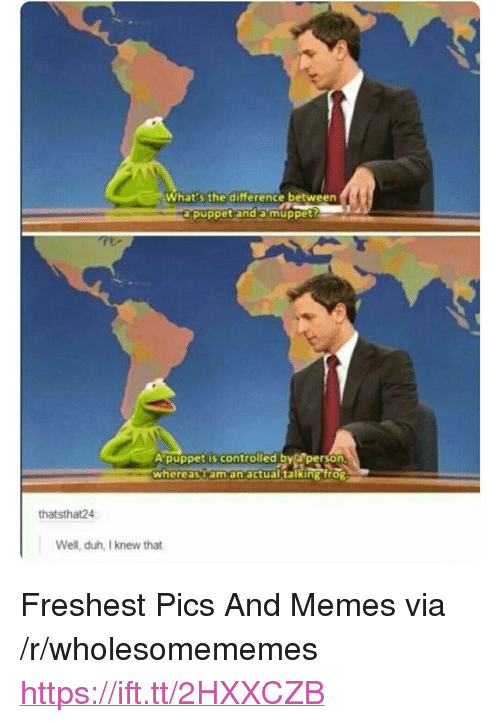 """I Knew That: What s the difference between  axpuppetanda muppet?  Apuppet is controlled bya person,  whereasaman actual talking froR  thatsthat24  Well, duh, I knew that <p>Freshest Pics And Memes via /r/wholesomememes <a href=""""https://ift.tt/2HXXCZB"""">https://ift.tt/2HXXCZB</a></p>"""