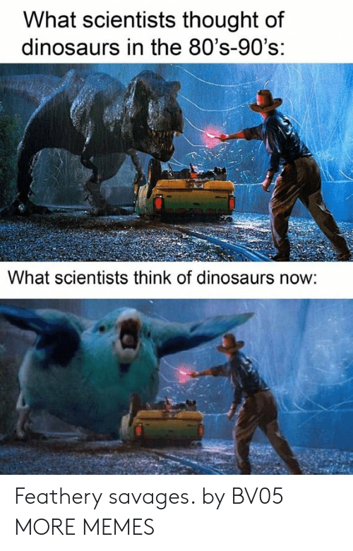 savages: What scientists thought of  dinosaurs in the 80's-90's:  What scientists think of dinosaurs now: Feathery savages. by BV05 MORE MEMES