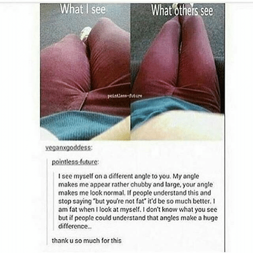"Future, Memes, and Fat: What see  What others See  future  yeganxgoddess;  pointless future:  I see myself on a different angle to you. My angle  makes me appear rather chubby and large, your angle  makes me look normal. If people understand this and  stop saying ""but you're not fat it'd be so much better. I  am fat when I look at myself.Idon't know what you see  but if people could understand that angles make a huge  difference  thank u so much for this"