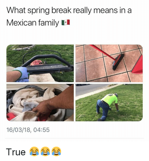 Memes, True, and Spring Break: What spring break really means in a  Mexican familyII  16/03/18, 04:55 True 😂😂😂