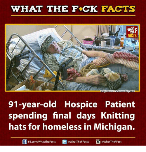 Ed, Edd n Eddy: WHAT THE FCK FACTS  naturalsociety com  mage Source  91-year-old Hospice Patient  spending final days Knitting  hats for homeless in Michigan.  Ed WhatTheFFacts  @WhatTheF Fact  FB.com/WhatThe Facts