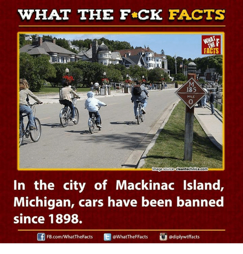 Ed, Edd n Eddy: WHAT THE FCK FACTS  WHAT  FACTS  185  MILE  magesourceCleantechnicacom  In the city of Mackinac Island  Michigan, cars have been banned  since 1898.  ediplywtffacts  Ed FB.com/What'TheFacts  @WhatTheF Facts
