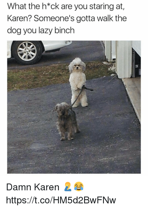 Lazy, Memes, and 🤖: What the h*ck are you staring at  Karen? Someone's gotta walk the  dog you lazy binch Damn Karen 🤦♂️😂 https://t.co/HM5d2BwFNw