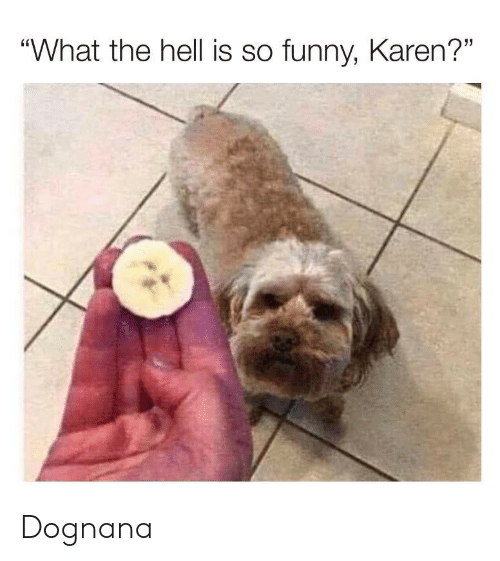 "Funny, Hell, and What: ""What the hell is so funny, Karen?"" Dognana"