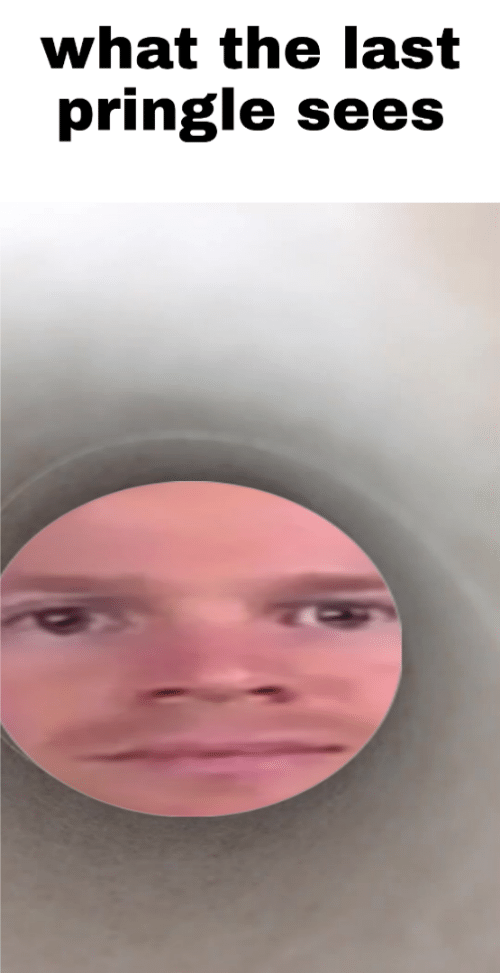 What, Pringle, and What The: what the last  pringle  sees