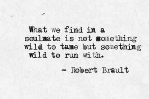 soulmate: What we find in a  soulmate is not sonething  wild to tame but sonething  wild to run with.  Robert Brault