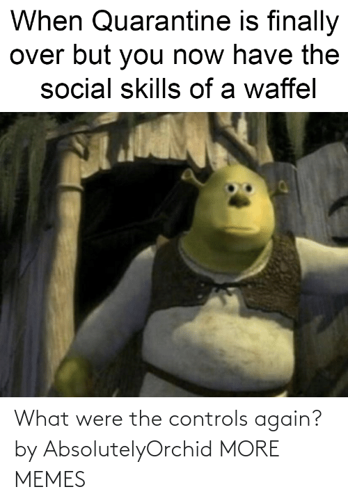 were: What were the controls again? by AbsolutelyOrchid MORE MEMES