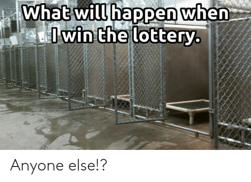 Lottery, Memes, and 🤖: What will happen when  Iwin the lottery. Anyone else!?