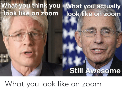 Look Like: What you look like on zoom