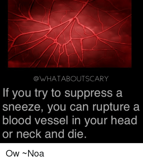A Sneeze: @WHATABOUTSCARY  If you try to suppress a  sneeze, you can rupture a  blood vessel in your head  or neck and die. Ow ~Noa