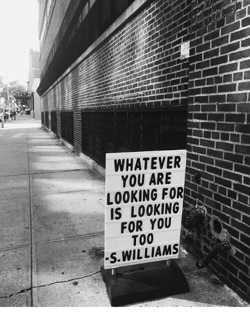 Looking For You: WHATEVER  YOU ARE  LOOKING FOR  IS LOOKING  FOR YOU  T00  S. WILLIAMS