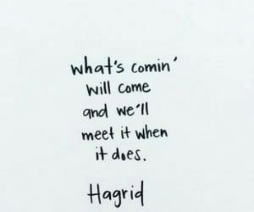 Hagrid, Will, and Whats: what's comin  will come  and we ll  meet it when  t does  Hagrid