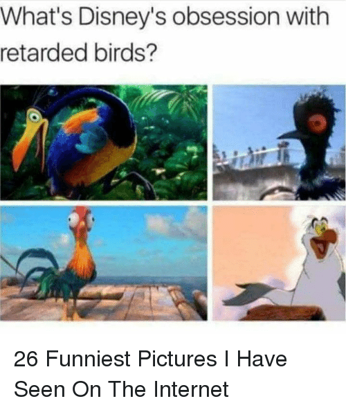 Internet, Retarded, and Birds: What's Disney's obsession with  retarded birds? 26 Funniest Pictures I Have Seen On The Internet