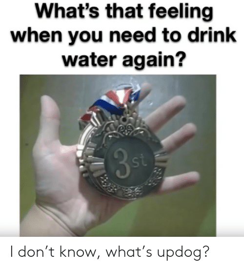 Whats That: What's that feeling  when you need to drink  water again?  35  st I don't know, what's updog?