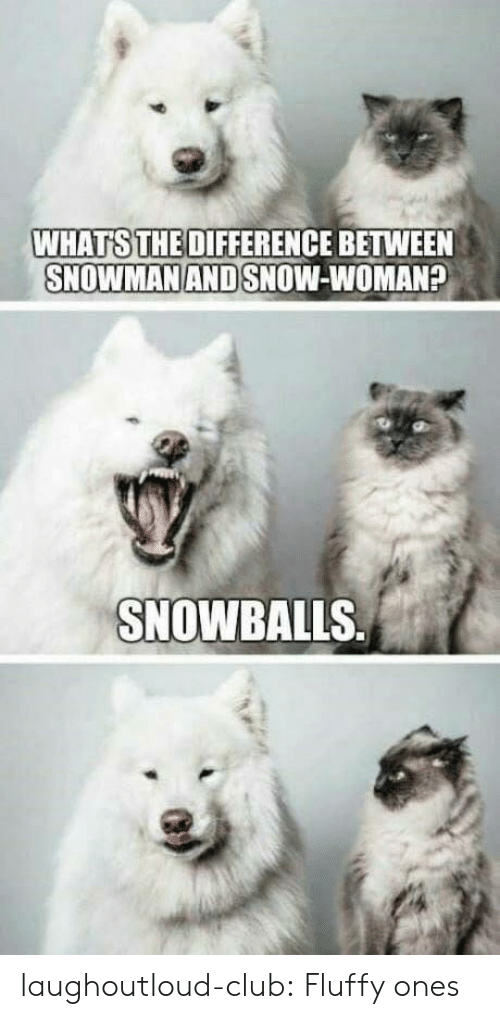 fluffy: WHATS THE DIFFERENCE BETWEEN  SNOWMAN AND SNOW-WOMAN?  SNOWBALLS laughoutloud-club:  Fluffy ones