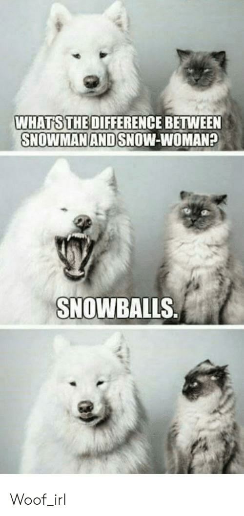 Snow, Irl, and Dog IRL: WHATS THE DIFFERENCE BETWEEN  SNOWMAN AND SNOW-WOMAN?  SNOWBALLS Woof_irl