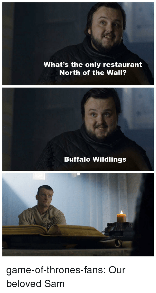 Game of Thrones, Tumblr, and Blog: What's the only restaurant  North of the Wall?  Buffalo Wildlings game-of-thrones-fans:  Our beloved Sam