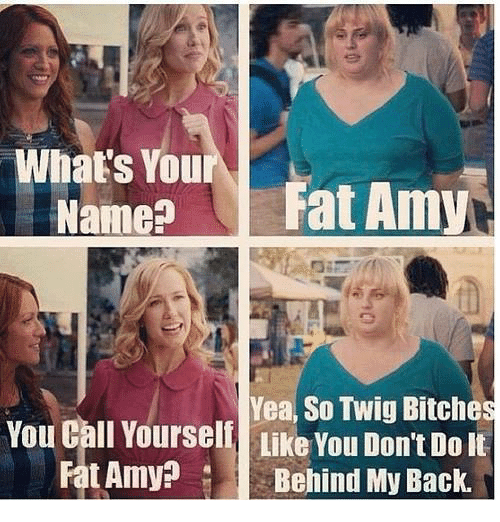 fat amy: What's You  Name?  Fat Amy  Yea, So Twig Bitches  You Call Yourself LikeYou Dont Dolt  Fat Amy  Behind My Back.