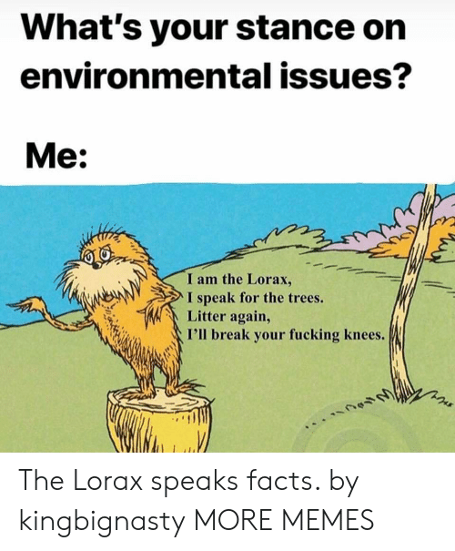Fucking: What's your stance on  environmental issues?  Me:  I am the Lorax,  I speak for the trees.  Litter again,  I'll break your fucking knees. The Lorax speaks facts. by kingbignasty MORE MEMES