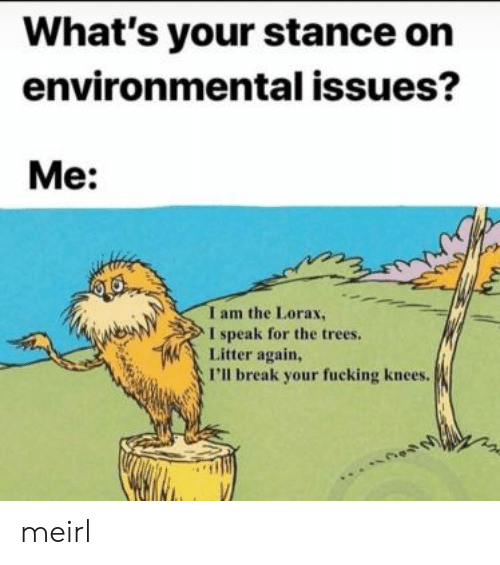 Environmental: What's your stance on  environmental issues?  Me:  I am the Lorax,  I speak for the trees.  Litter again,  I'll break your fucking knees. meirl