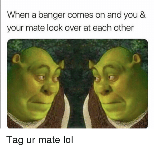 Funny, Lol, and You: When a banger comes on and you &  your mate look over at each other Tag ur mate lol