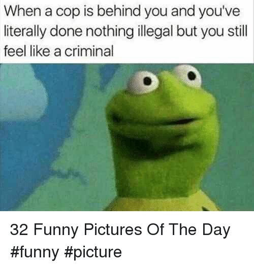 Funny, Pictures, and Criminal: When a cop is behind you and you've  literally done nothing illegal but you still  feel like a criminal 32 Funny Pictures Of The Day #funny #picture