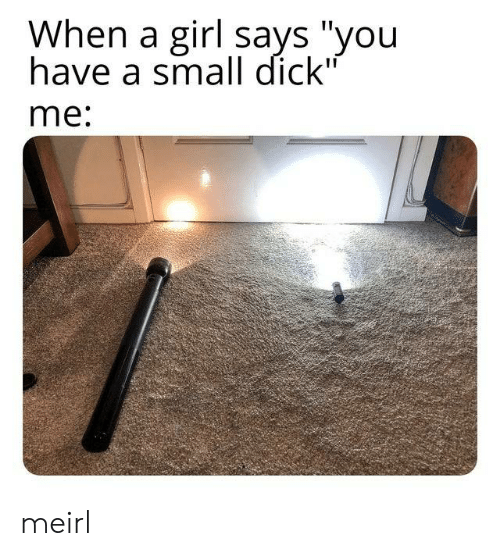 """Dick, Girl, and Small Dick: When a girl says """"you  have a small dick""""  me: meirl"""