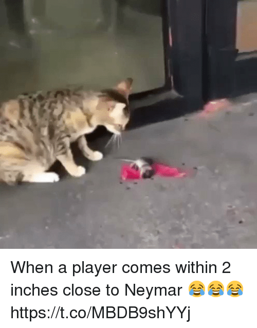 Neymar, Soccer, and Player: When a player comes within 2 inches  close to Neymar 😂😂😂 https://t.co/MBDB9shYYj