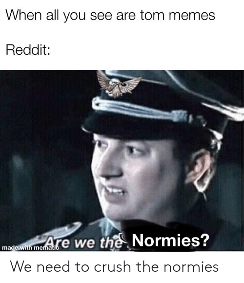 When All You See Are Tom Memes Reddit Are We the Normies